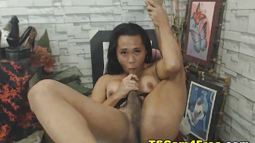 Solo Shemale Masturbation And Self Sucks