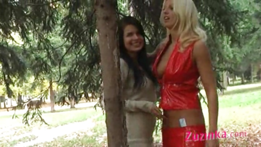 Zuzinka and lesbian friend in public action